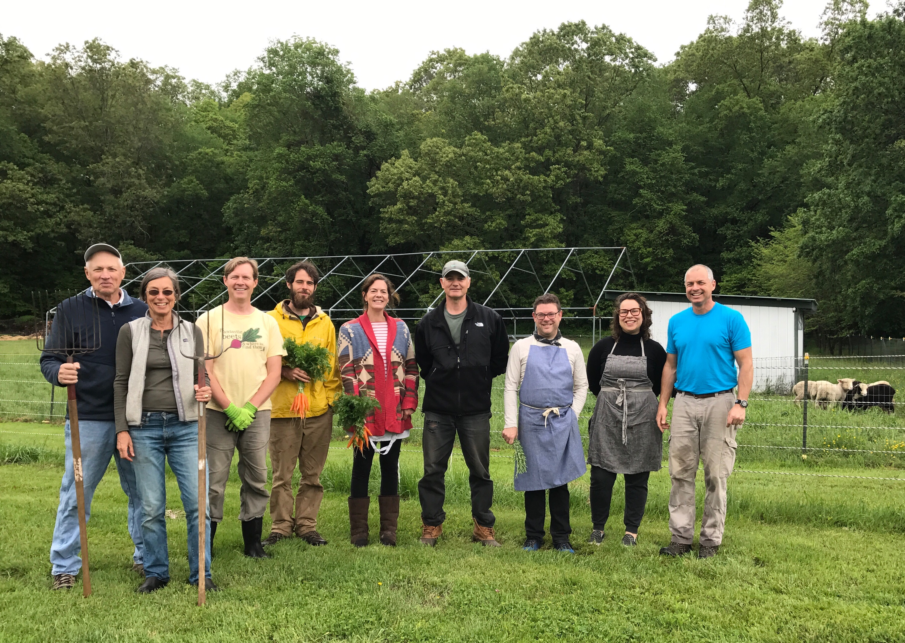 About us white gate farm farm team june 2017 l to r david pauline fred matt lesley kent paco amelia and corey mightylinksfo